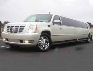 20 passenger limousine optimized
